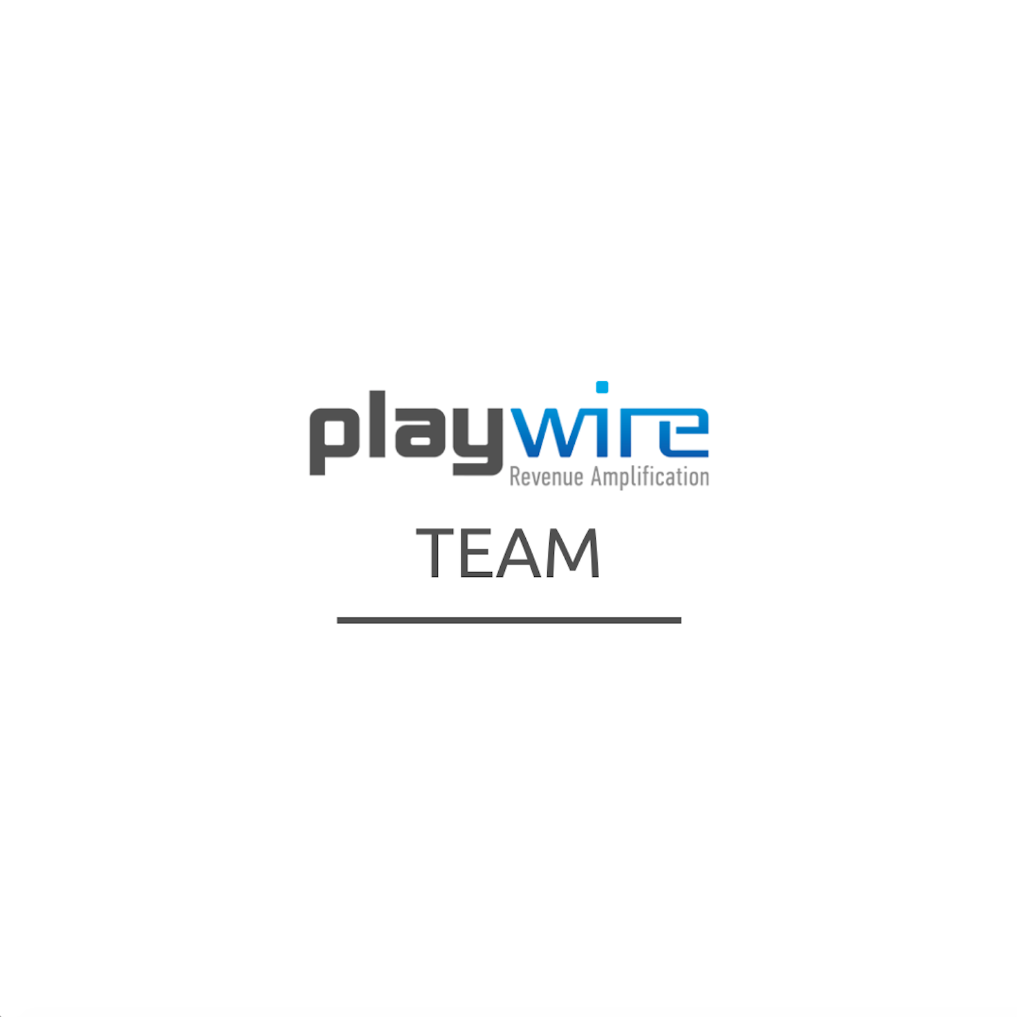 Playwire Promotes Anthony Berrena to Chief Revenue Officer