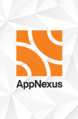 Playwire Partners with AppNexus on PreBid for Video Advertising